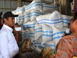 Tingkatkan Produksi Mentan Instruksikan Gunakan Inpari Di Wilayah Banten