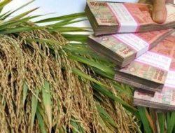 Ekonomi Pertanian