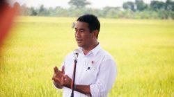 menteri-pertanian-panen-raya-padi-di-demak