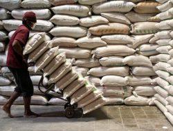 Pemerintah Kembali Impor Beras, Saat Stok di Bulog Masih Melimpah