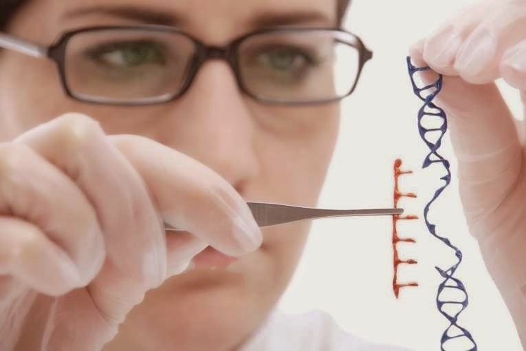 10 Fakta Tentang Tanaman Rekayasa Genetika