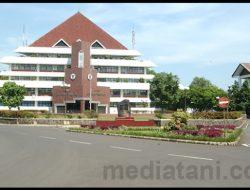 Wujudkan Green Campus, Rektor IPB Larang Civitas Akademika Naik Ojek