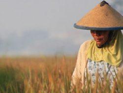 Ratapan Tani Indonesia