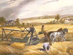 Renaissance dan Revolusi Pertanian