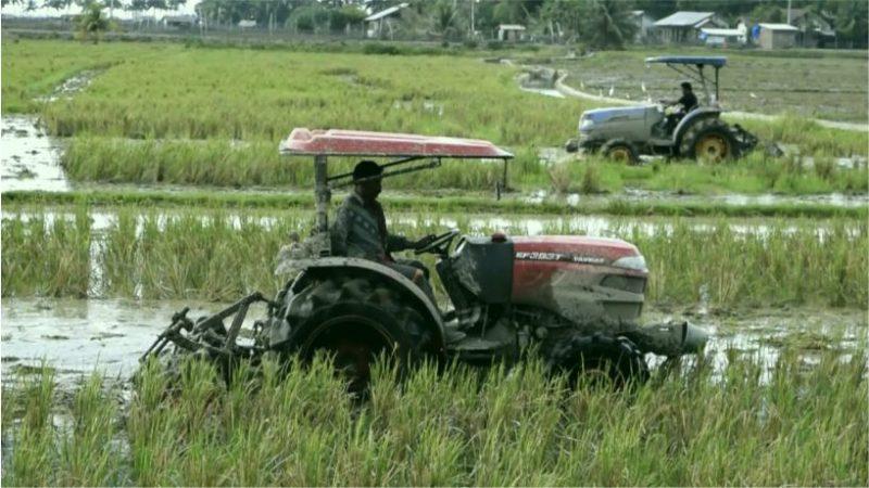ilustrasi: petani memanfaatkan tekhnologi dalam bertani