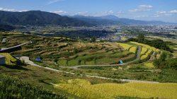 Lanskap teras sawah di Jepang