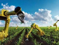 Pembangunan Pertanian Tak Bisa Sporadis