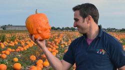 Frankenstein-pumpkins 1
