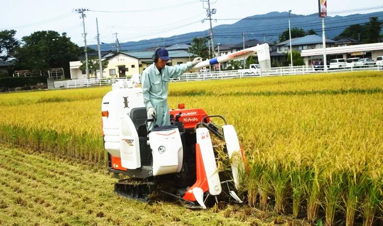 Pertanian Di Jepang - Salah satu aktivitas petani di jepang yang memanfaatkan tekhnologi.