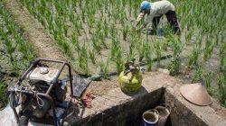 petani menggunakan elpiji untuk irigasi