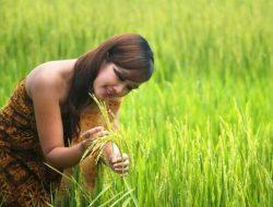 "Farmspreneurship Mendorong Generasi Muda ""Turun Tanah"""