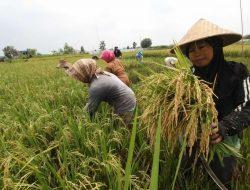 Di Bekasi, Program Asuransi AUTP Sepi Peminat