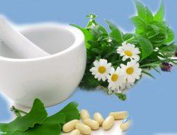 9 Tanaman Obat Herbal Diabetes