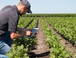 Teknologi Israel Ubah Ethophia Jadi Surga Pertanian Terbesar ke 12 di Dunia