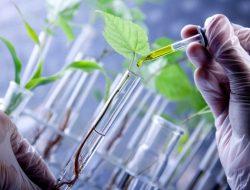 Inilah 3 Kontribusi Penting Teknologi Industri Pertanian di Bidang Peternakan