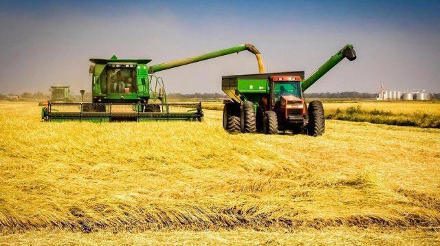 essay tentang keteknikan pertanian