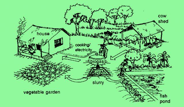 integrated farming system
