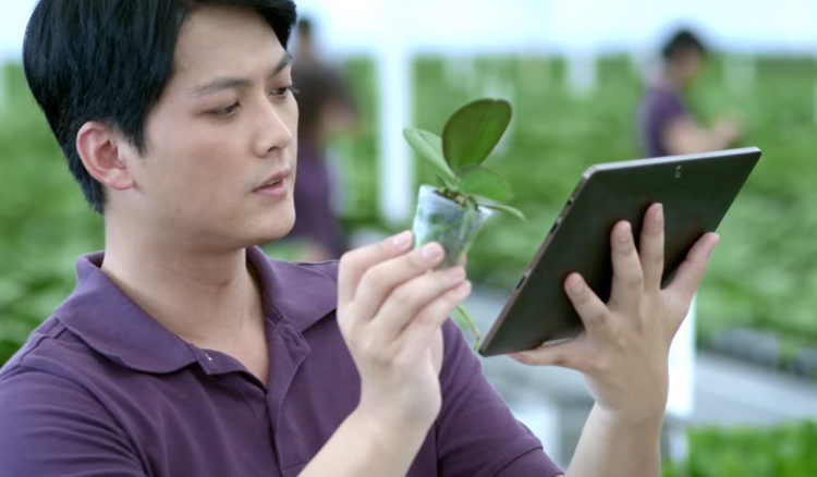 Bercocok Tanam Dengan Bioteknologi Modern