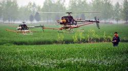 drone sawah