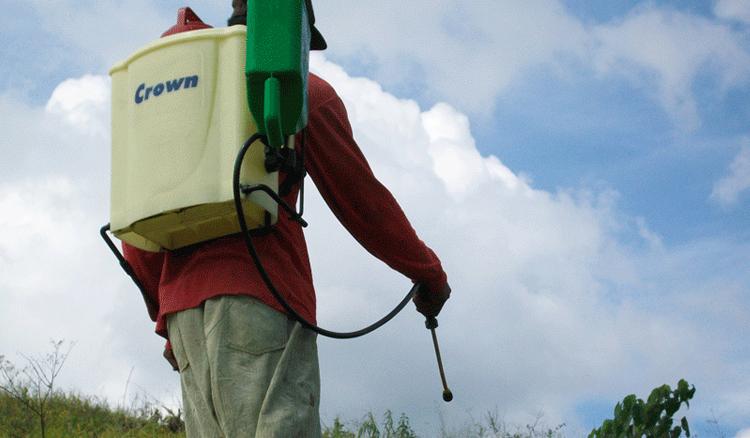 Penggunaan herbisida sistemik