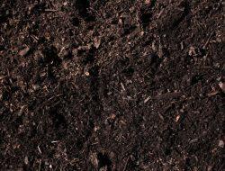 Tanah humus, Karakteristik, Manfaat Dan Kekurangannya