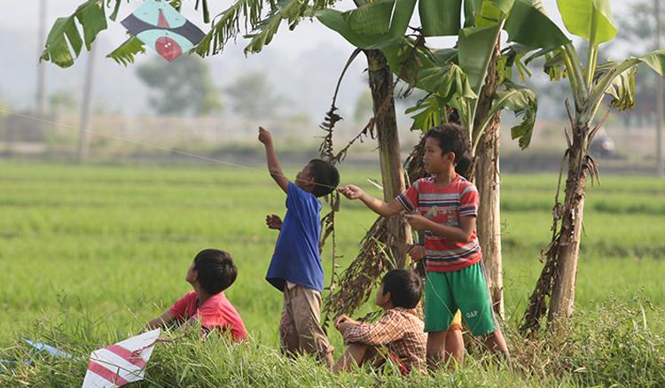 Anak kecil bermain layang-layang di lahan pertanian