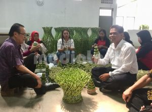 Dirjen Hortikultura Kementan, Suwandi saat berkunjung ke sentra produksi tanaman suji Sukabumi (dok. Kementan)