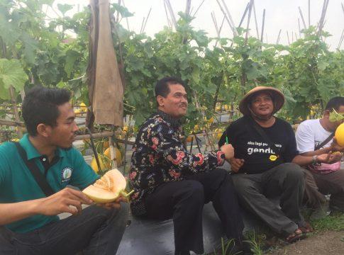 Dirjen Hortikultura, Suwandi (tengah, memakai batik) dan Petani muda sukses, Bagas (Kanan, Memakai kaos hitam dan bercaping) (dok. kementan)