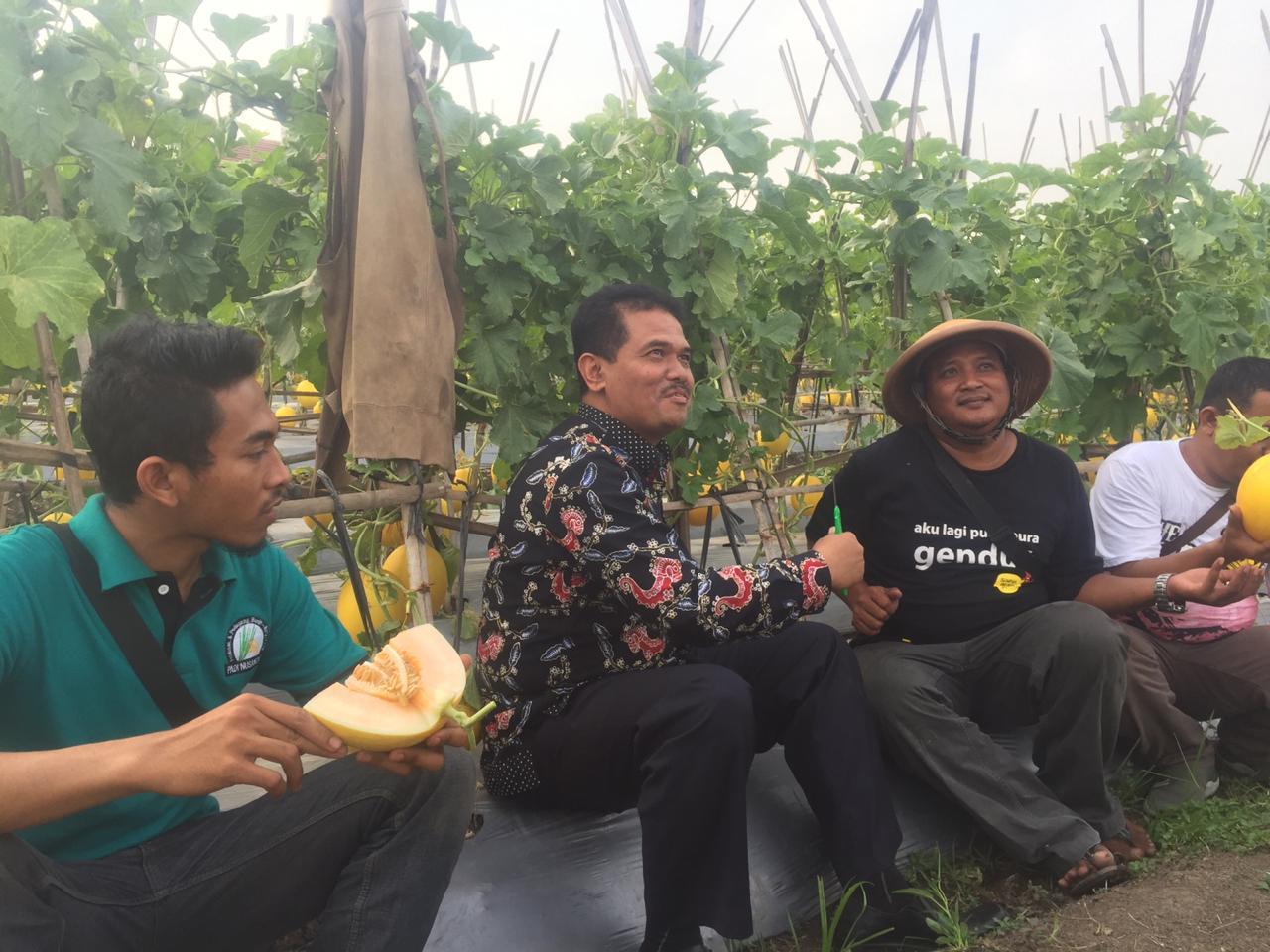 Gunakan Sistem Modern, Penghasilan Petani Muda Ini Sehari Raup Hingga Rp 100 Juta