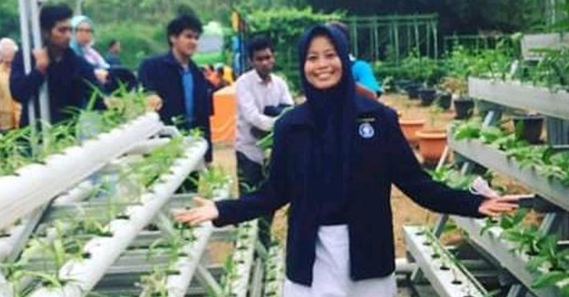 IDAWATI, Kandidat Doktor Ilmu Penyuluhan Pembangunan, FEMA Institut Pertanian Bogor, serta Dosen pada Fakultas Pertanian Universitas Andi Djemma Palopo, Sulawesi Selatan