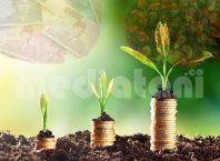 finansial dan sustainability (ilustrasi)