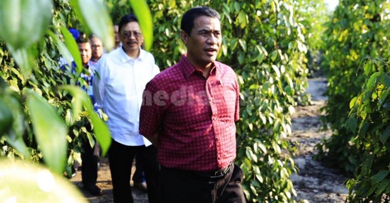Menteri Pertanian, Andi Amran Sulaiman meninjau lahan perkebunan lada di Desa Air Seruk, Kecamatan Sijuk, Belitung, Sabtu (4/5/2019)