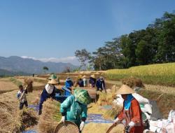 Paradigma Baru Pengembangan Sumber Daya Manusia Pertanian