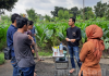 Pelatihan Pembuatan Pestisida dari Puntung Rokok