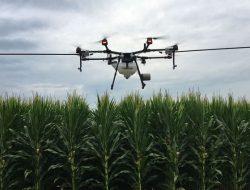 Drone Selamatkan Kehidupan Petani Malaysia di Tengah Pandemi