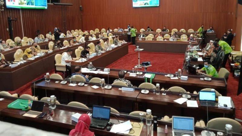 Suasana Rapat Dengar Pendapat Komisi IV DPR dengan Kementerian Pertanian di Gedung DPR RI, Jakarta (30/6/2020)