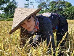 Berpanas-panasan di Sawah, Luna Maya Tuai Pujian dari Netizen