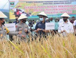 Panen di Sungayang, Gubernur Sumbar: Pertanian Jadi Prioritas Pembangunan