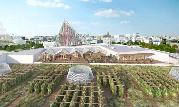 The Guardian: pertanian kota terbesar di atap paris