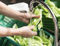 Ini Alasan Kenapa Mencuci Buah dan Sayur dilarang Menggunakan Sabun
