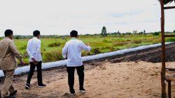 Presiden Jokowi didampingi Mentan SYL meninjau langsung titik-titik lokasi lahan rawa pengembangan food estate di Kapuas, Kamis (9/07/20).