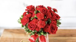 Pinterest: Pinterest: Rose Flowerr