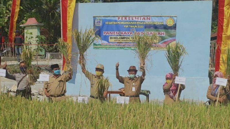 Panen raya dan peresmian pembangunan irigasi perpompaan di Padukuhan Gatak, Kelurahan Karangmojo Kapanewon, Minggu (26/7/2020).
