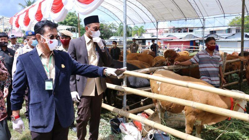 Mentan SYL menghadiri Panen Pedet di Kabupaten Sinjai (30/07/2020).
