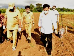 Tingkatkan Produksi, Gubernur Sulut Optimalkan Lahan Kering Tanam Padi Ladang