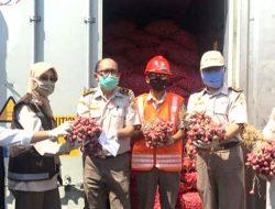 Kini Giliran Bawang Merah Probolinggo Yang Diekspor Ke Thailand