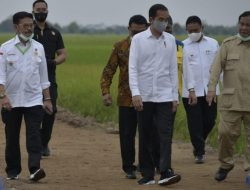 Dampingi Presiden Jokowi di Kalteng, Mentan SYL Siap Percepat Bangun Food Estate