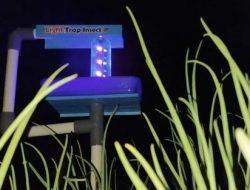 Kurangi Penggunaan Pestisida, Light Trap Insect Buatan Siswa SMK Ini Ampuh Atasi Hama