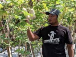 Petani Ponorogo Ini Menginspirasi Pemuda di Desanya dengan Bertani Labu Madu