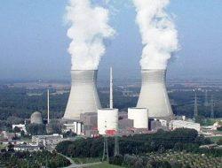 Indonesia Akan Kembangkan Pertanian dengan Energi Nuklir